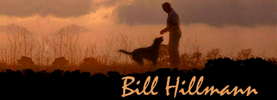 Bill Hillmann - Retriever Training